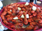 crawfish (2)